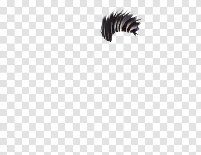 Monochrome Photography Black And White - Eyelash - Zipper Transparent PNG