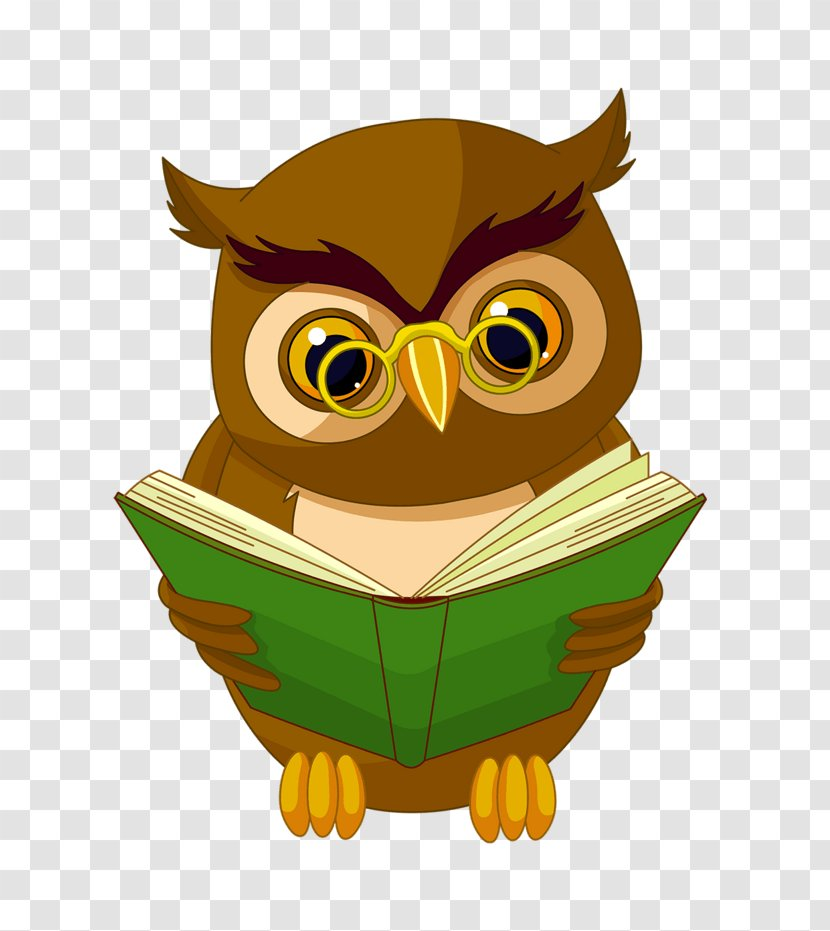 Owl Animated Cartoon Clip Art Drawing Bird Chouette Bubble Transparent Png