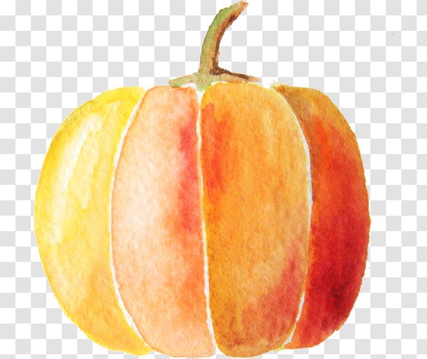 Pumpkin Spice Latte - Produce - Watercolor Transparent PNG