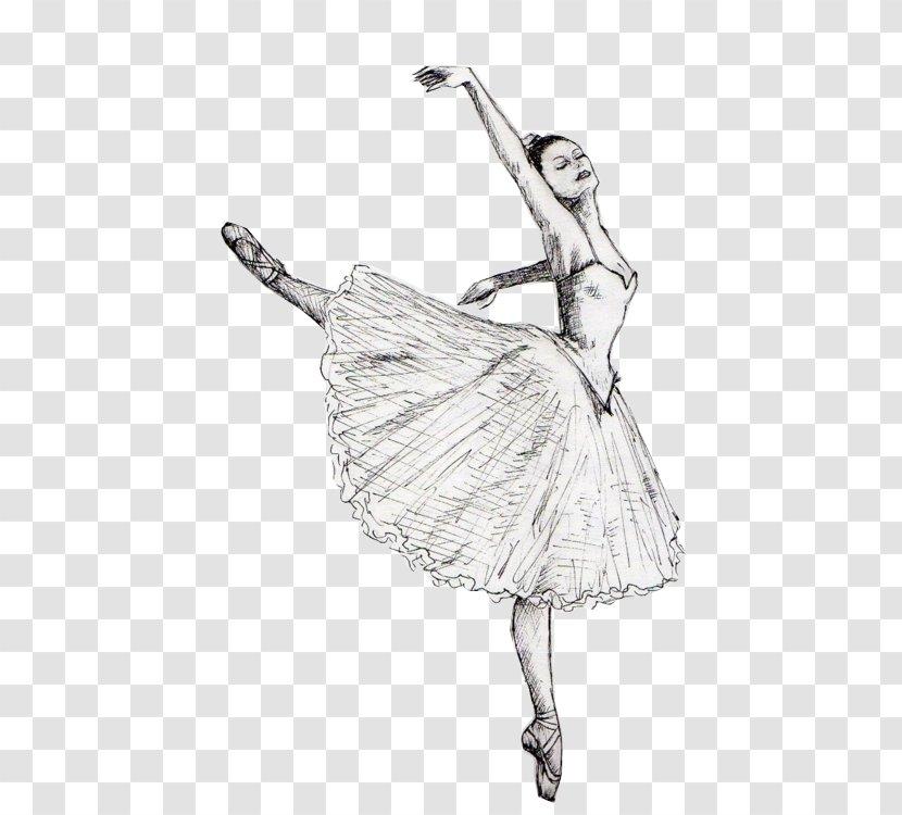 Drawing Ballet Dancer Sketch Joint Tai Transparent Png