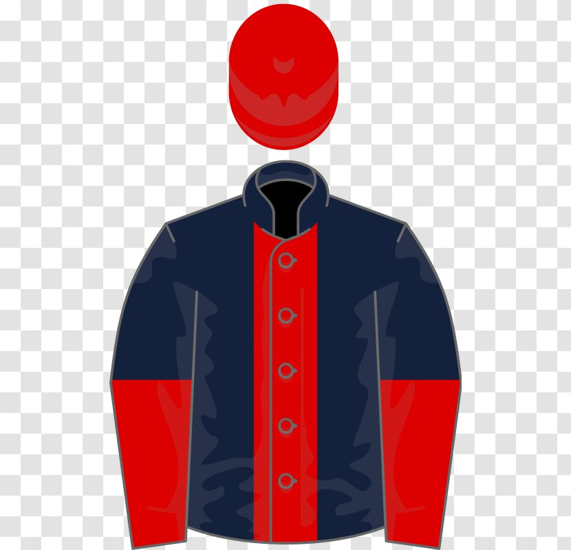 2017 Melbourne Cup Rekindling Thoroughbred Wikipedia Foal - Champion Hurdle Transparent PNG