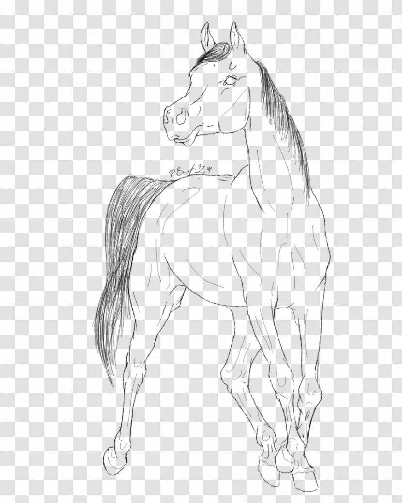 Arabian Horse Coloring Book Line Art Drawing Mustang Tack Horsehead Printing Transparent Png