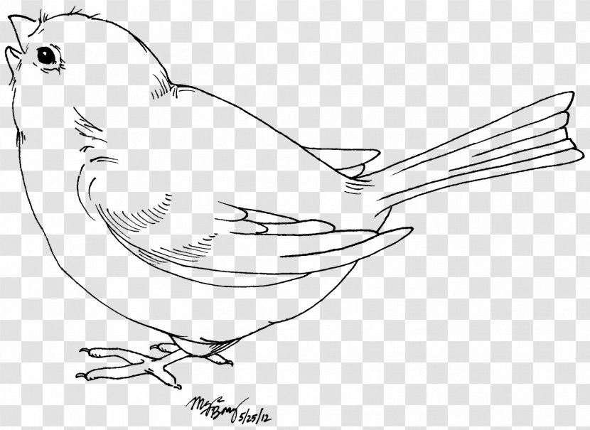 Bird Drawing Black And White Clip Art Love Birds Transparent Png