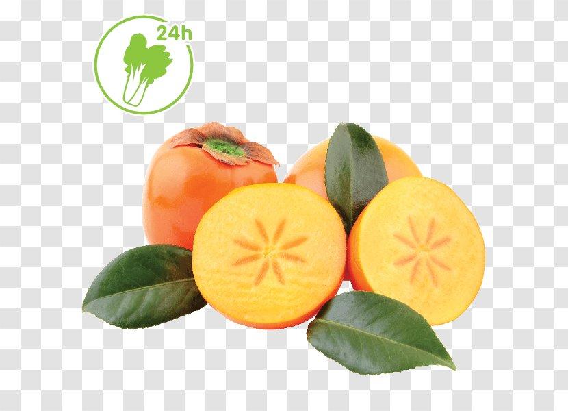 Clementine Tangerine Mandarin Orange Tangelo Bitter - Cucurbita - Durian Fruit Products In Kind Transparent PNG