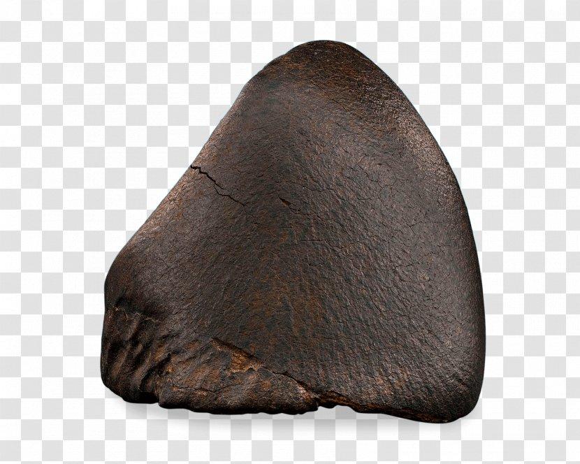 Snout Fur - Rock - Nosecone Transparent PNG