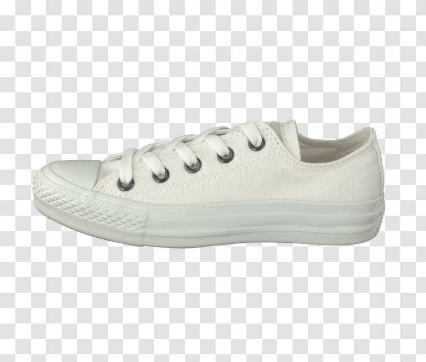 Stars Converse Shoe Vans