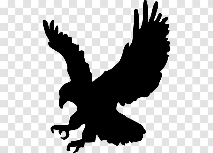 Clip Art Vector Graphics Openclipart Bald Eagle Bird Of Prey American Logo Clipart Transparent Png