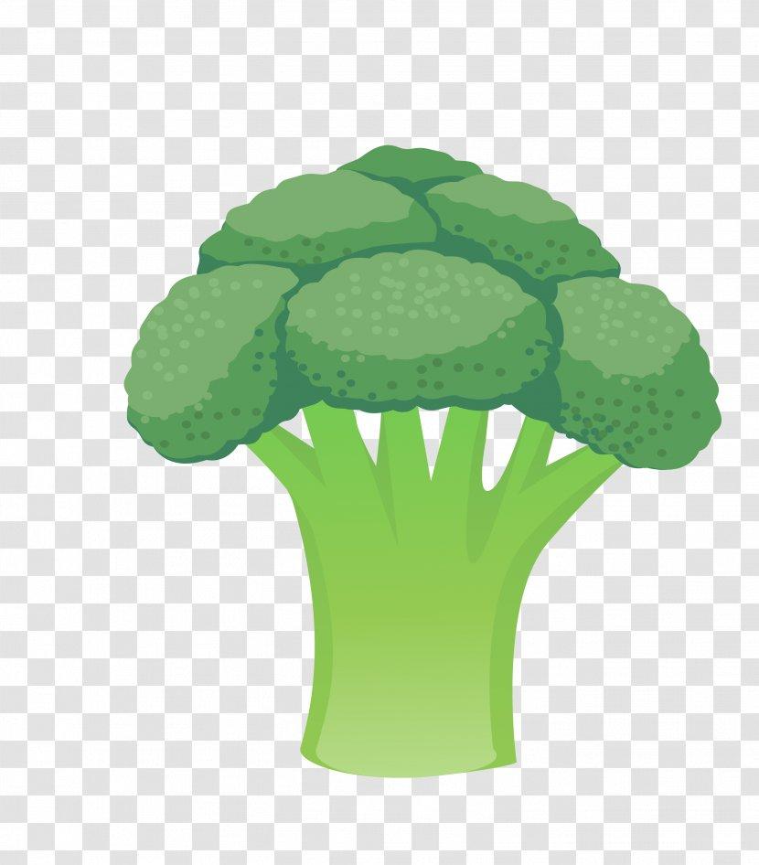 cauliflower vegetable broccoli green vector leaves transparent png pnghut