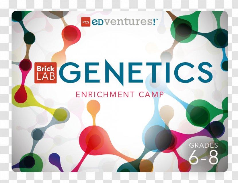 Graphic Design Brand Chemistry - Plastic Transparent PNG