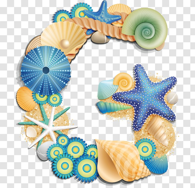 Letter Seashell Clip Art - Beach - Watercolor Transparent PNG