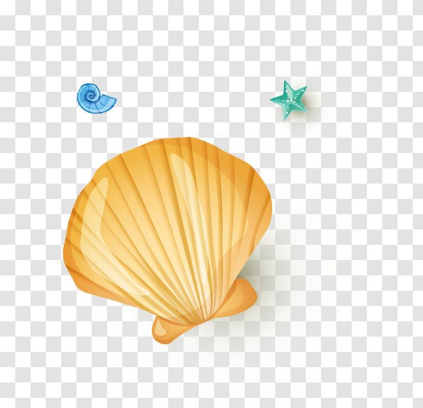 Seashell Pearl Shellfish Orange - Shell Transparent PNG