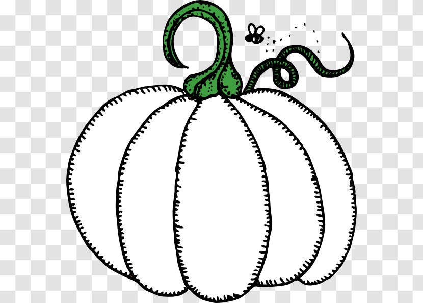 Pumpkin Clipart Black and White Outline Vector EPS Included | Etsy