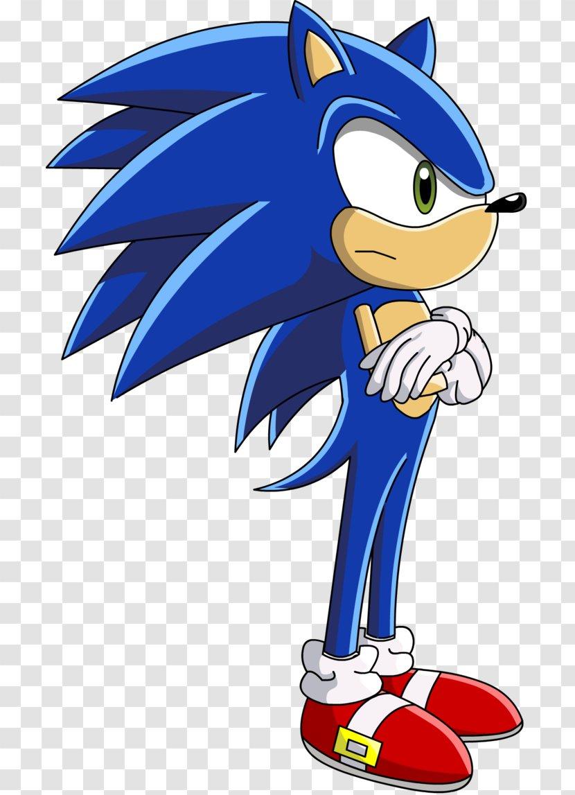 Amy Rose Chris Thorndyke Sonic The Hedgehog Blaze Cat Clip Art Transparent Png