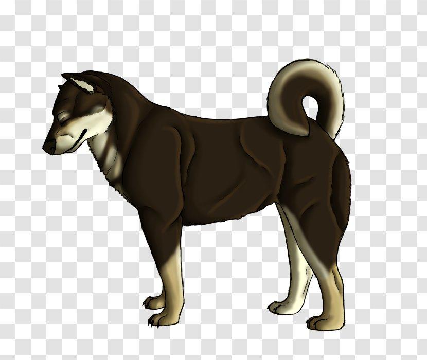 Black Shikoku Dog