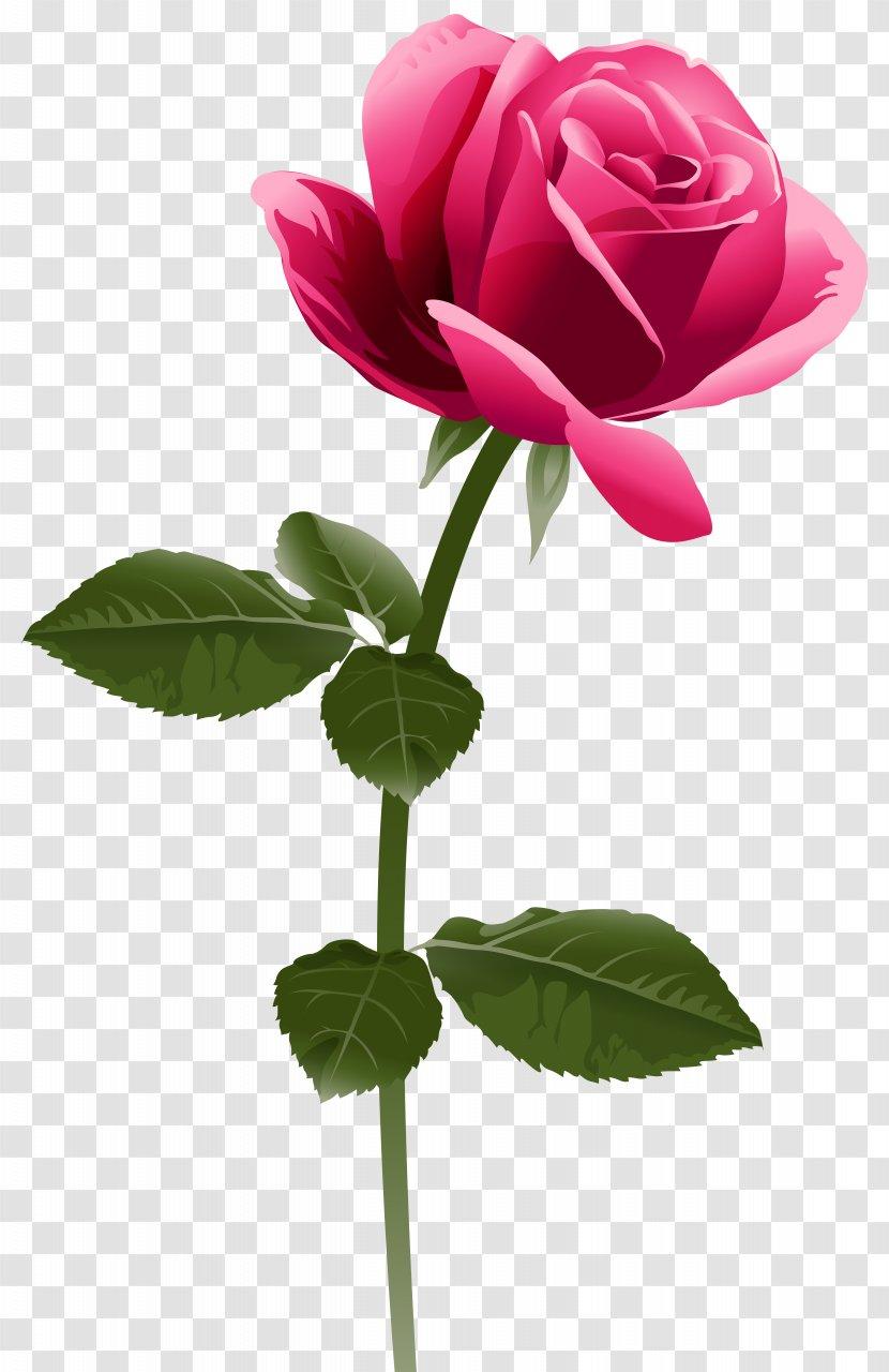 Fuchsia Flower Clip Art