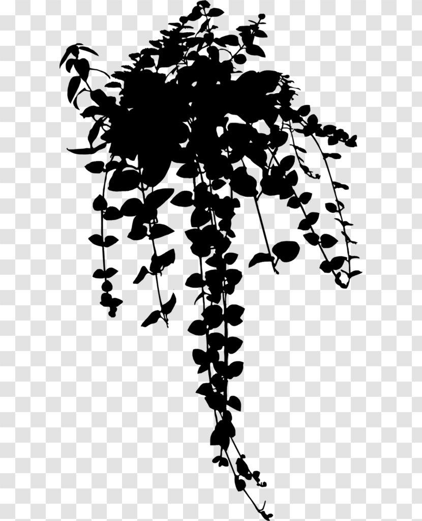 Image Aesthetics Plants Art Flower Plant Stem Transparent Png