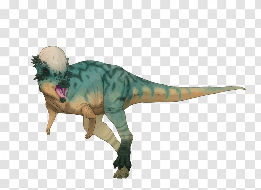 Pachycephalosaurus Tyrannosaurus Velociraptor Dinosaur Summer Prosaurolophus - Vector Transparent PNG
