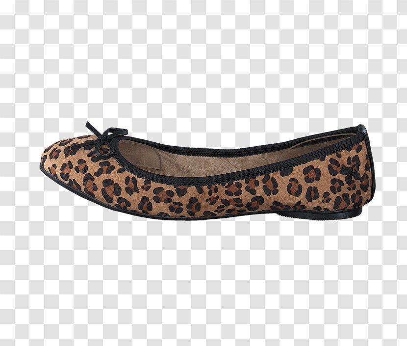Ballet Flat Shoe Walking - Footwear
