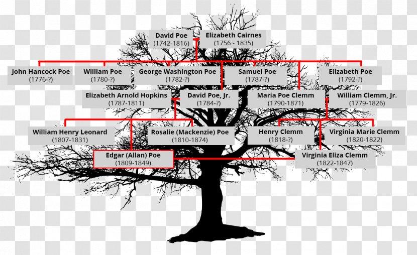 Family Tree Diagram Analysis Transparent PNG