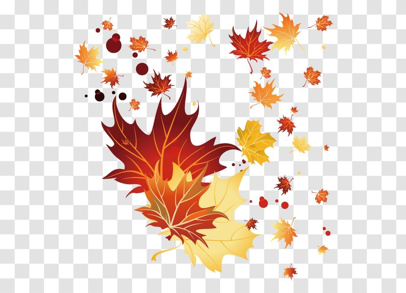 Maple Leaf Autumn Drawing Fall Leaves Decoration Transparent Png