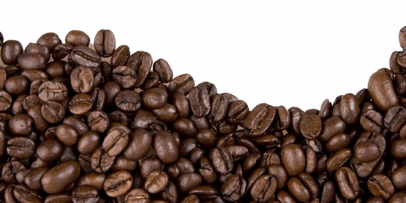 Coffee Bean Cafe Cocoa - Preparation - Beans Transparent PNG
