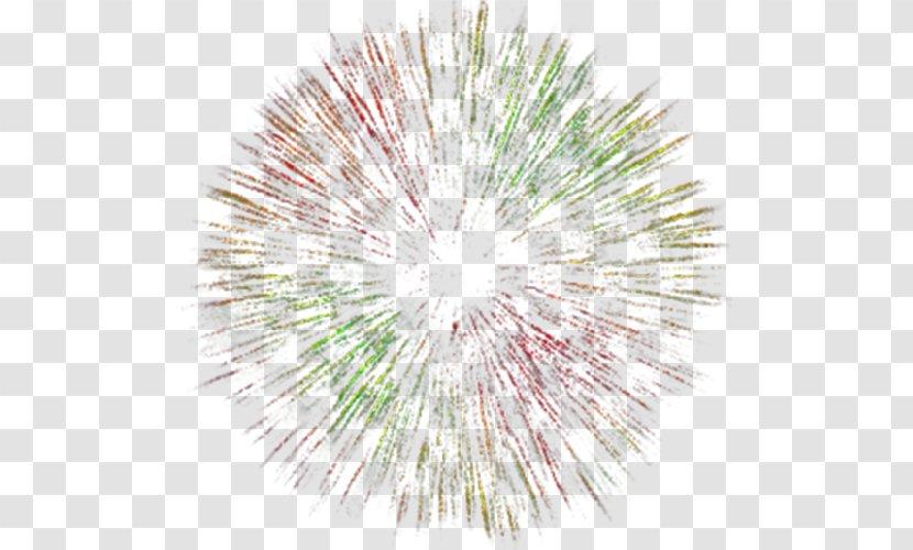 Fireworks Animation - Colorful Transparent PNG