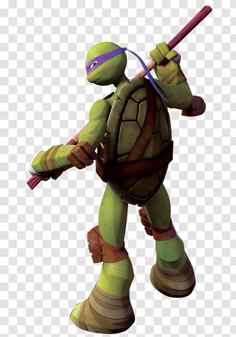 Donatello Michaelangelo Leonardo Raphael Teenage Mutant Ninja