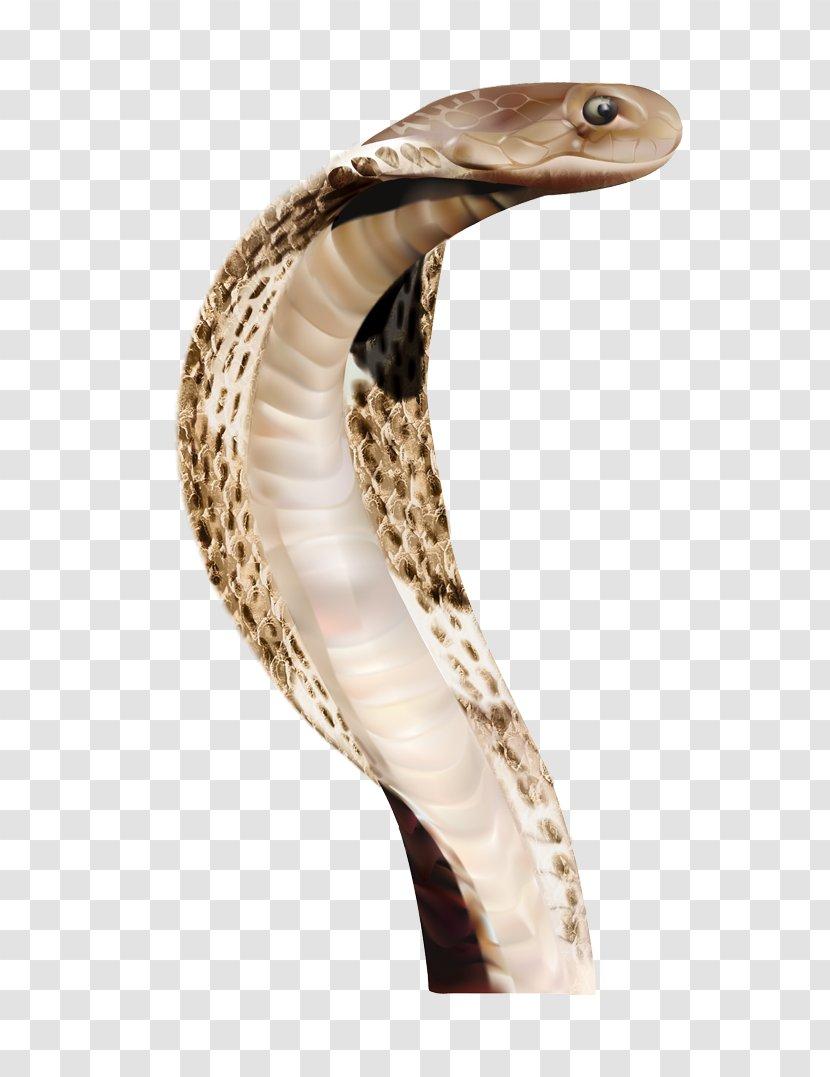 Snake Clip Art - Indian Cobra - Image Picture Download Free Transparent PNG