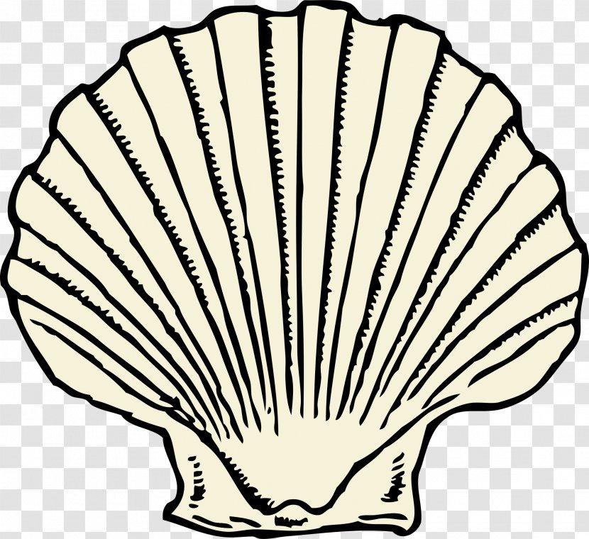 Seashell Clip Art Free Printable | Clipart library - Free Clipart Images |  Seashells template, Templates printable free, Free clip art