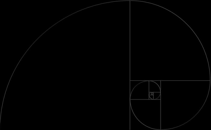 Fibonacci Number Film Mathematics Curve - Line Art Transparent PNG