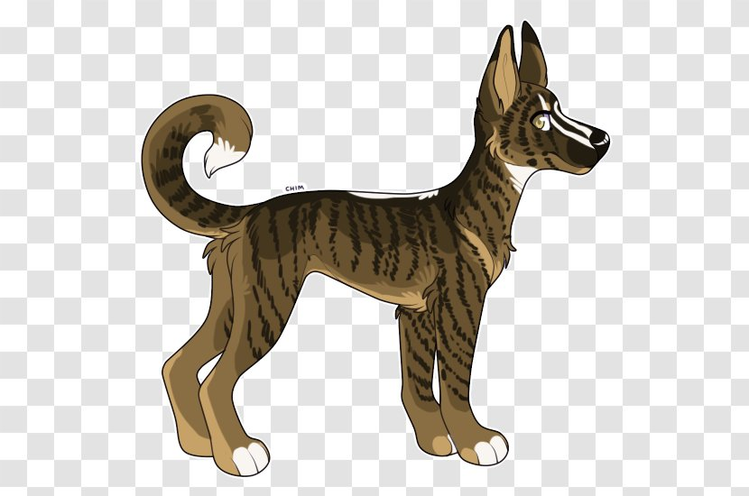 Dog Breed Cat Tail Transparent PNG
