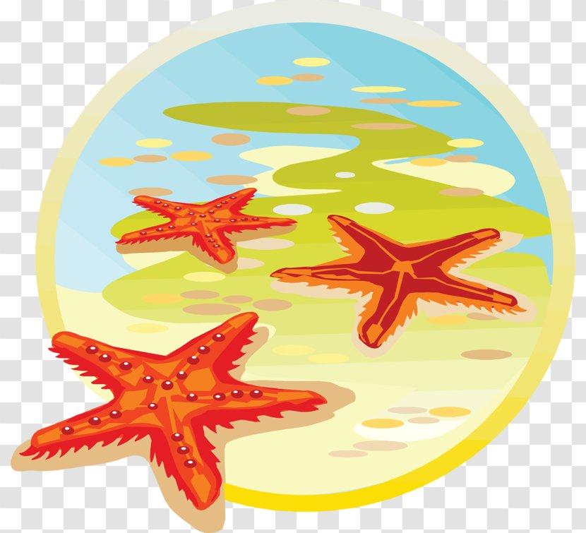 Starfish Sea Classe De Mer Clip Art Transparent PNG