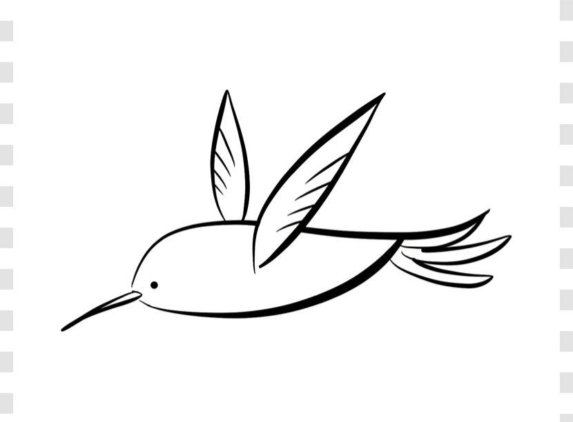 Hummingbird Coloring Book Drawing Clip Art Plant Stem Humming Bird Cartoon Transparent Png