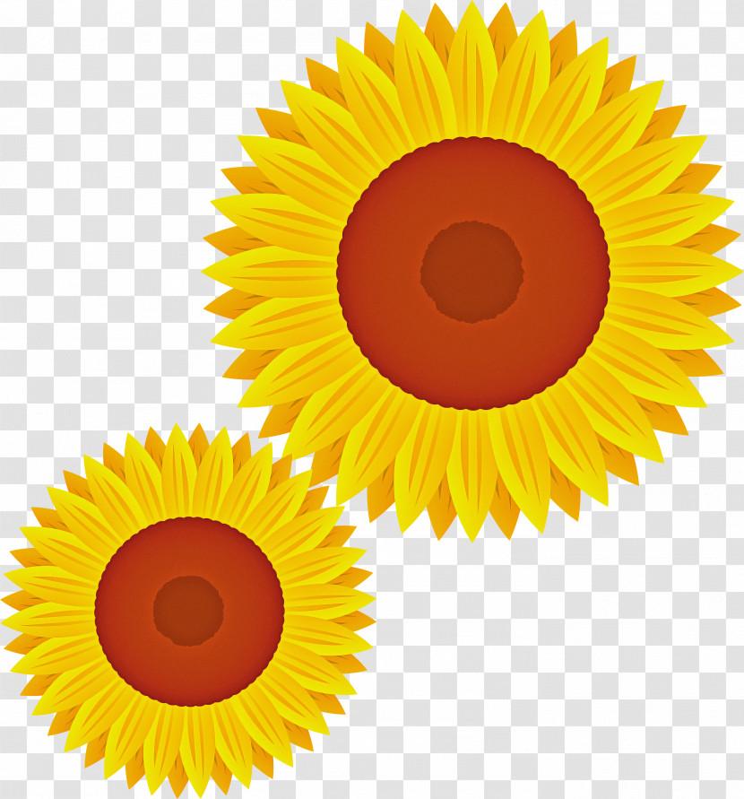 Sunflower Transparent PNG