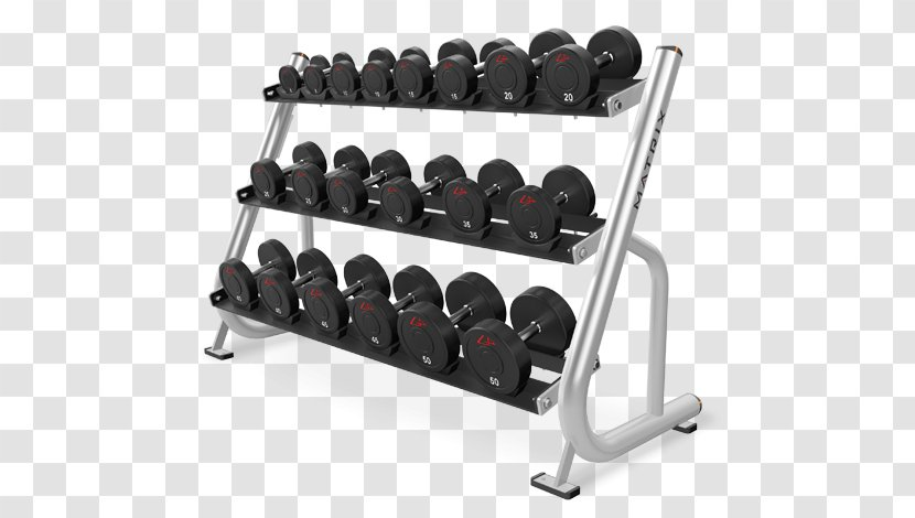 Dumbbell Barbell Physical Fitness Weight Training Strength Power Rack Twin Yoga Transparent Png