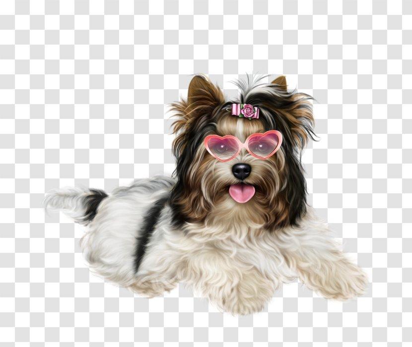 Yorkshire Terrier Puppy Desktop Wallpaper Clip Art Small Transparent Png