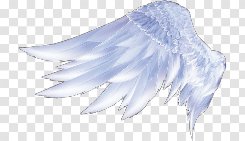 Angel Wings Feather Transparent PNG