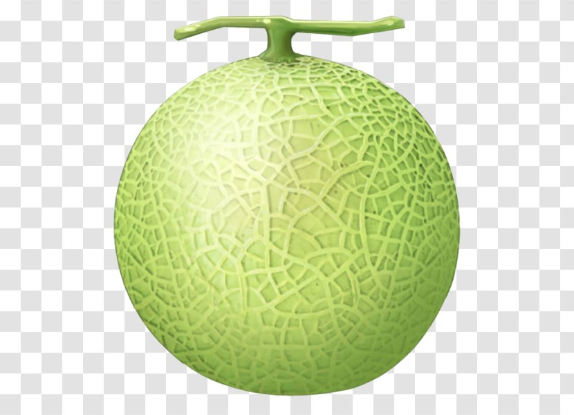 Cantaloupe Melon Clip Art Honeydew Green Luffa Transparent Png Collection of cantaloupe cliparts (23) cantaloupe clip art cantaloupe clipart black and white cantaloupe melon clip art honeydew
