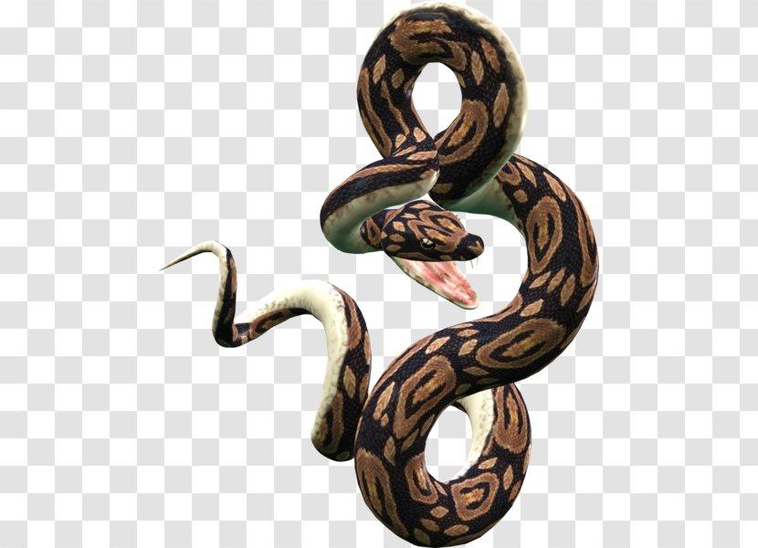 Snake Clip Art - Rattlesnake Transparent PNG