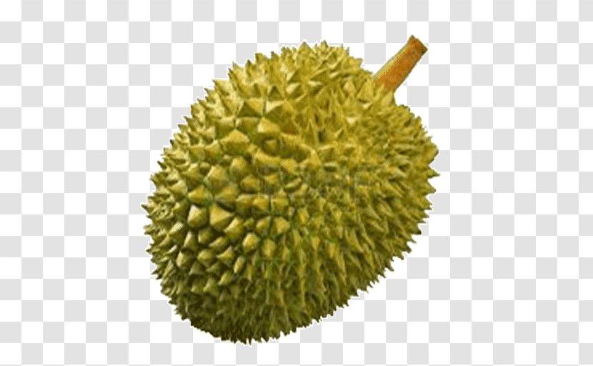 thai cuisine durio zibethinus fruit clip art purple mangosteen durian transparent png thai cuisine durio zibethinus fruit
