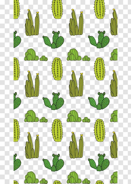 Cactaceae Succulent Plant Drawing Wallpaper Green Cactus Float Transparent Png