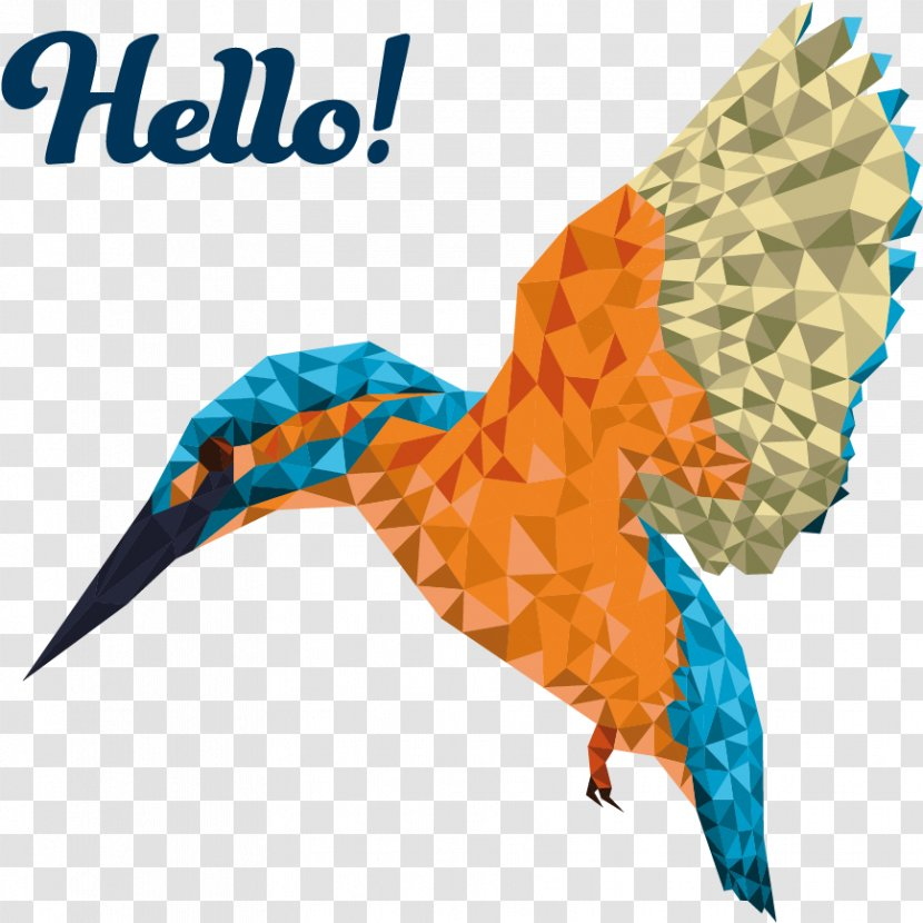 Animal Cartoon - Paper - Falconiformes Transparent PNG