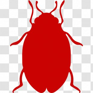 Red Imported Fire Ant Pest Control Harvester Insect Ants Transparent Png