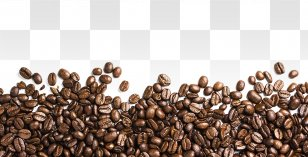 coffee bean seed vector beans transparent png coffee bean seed vector beans