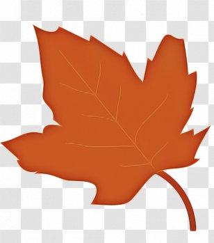 Maple Leaf Background Png Images Transparent Maple Leaf Background Images