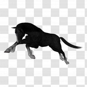 Decal Sticker Horse Head Chess Mustang Silhouette Royal Wild West KR3X4 |  Horse silhouette, Silhouette clip art, Silhouette art
