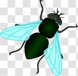 insect grasshopper cartoon green clip art clipart - Insect, Grasshopper,  Cartoon, transparent clip art